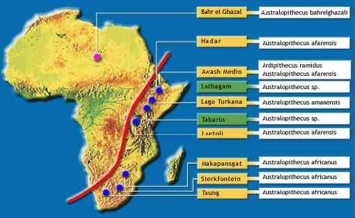 Mapa de los principales yacimientos de fósiles humanos en África