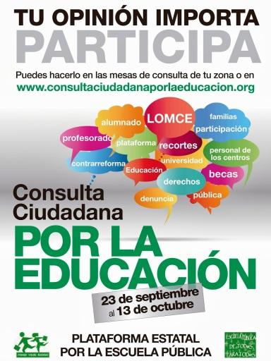 Cartel Consulta Ciudadana